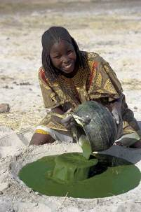 Spirulina oogst in Chad